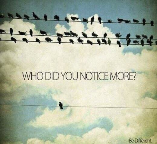 tmb blog who did you notice more